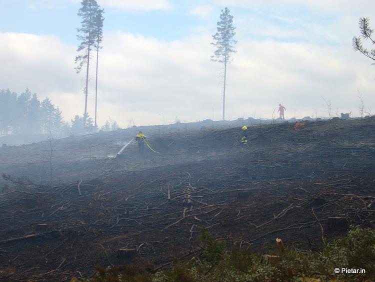 P1040337 Metsää kulottanut mies paloi hengiltä