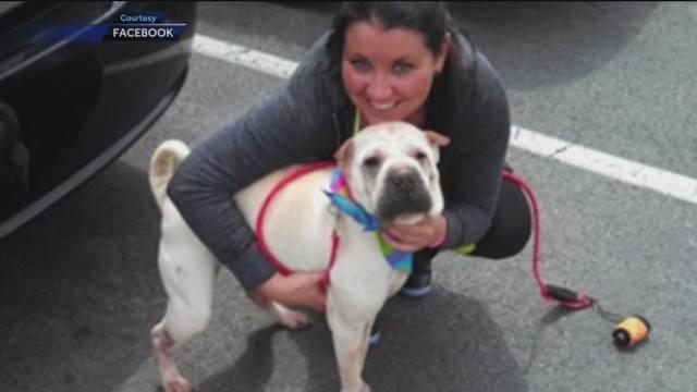 original1 Poliisi otti kiinni naista puraisseen koiran – Viilsi koiran kurkun auki