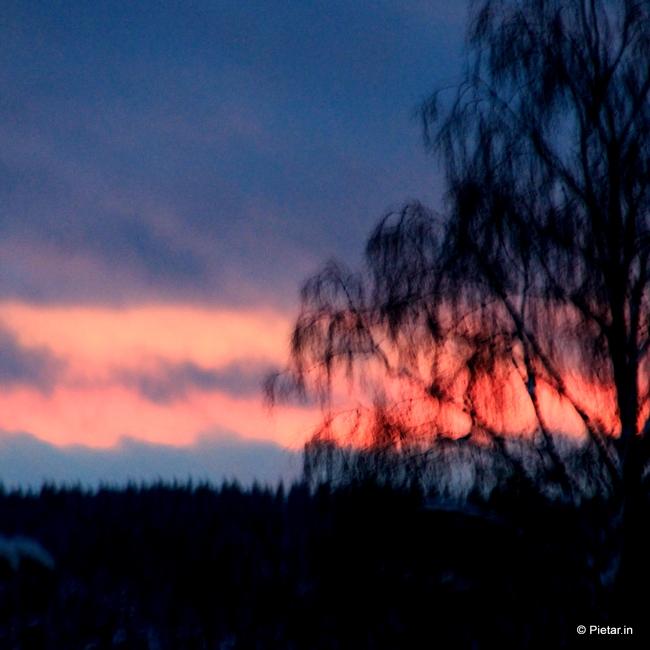 IMG 0624 Helmikuun hetket   Kohokohtana Tallinna